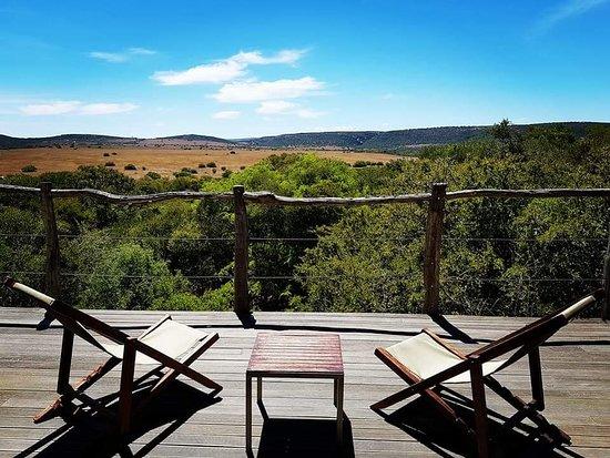 Amakhala Game Reserve, África do Sul: FB_IMG_1521396946590_large.jpg