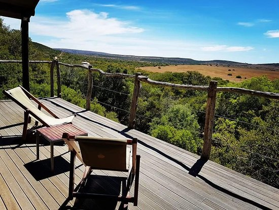 Amakhala Game Reserve, África do Sul: FB_IMG_1521396938451_large.jpg