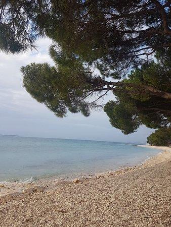 Fazana, Κροατία: IMG-20180310-WA0082_large.jpg