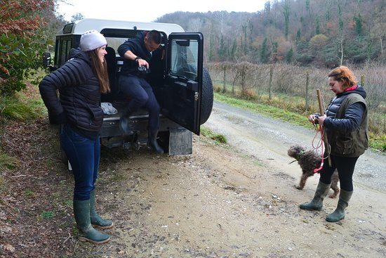 The Truffle Hunter: Francesca with her Landrover