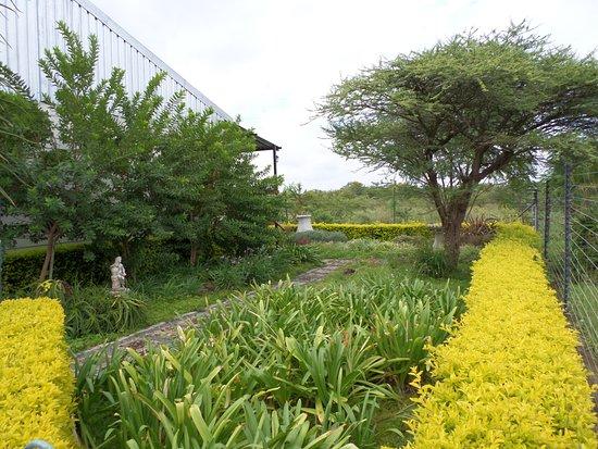 Louis Trichardt, Sydafrika: Rose guesthouse Garden