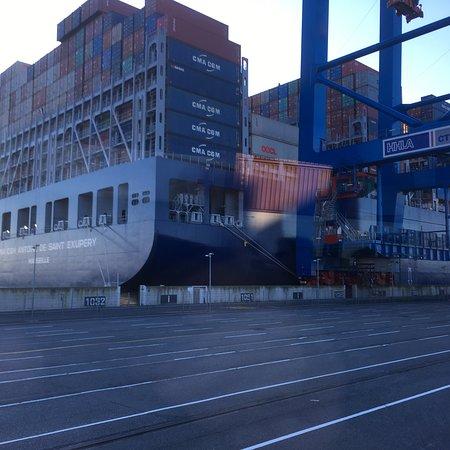 Port of Hamburg: photo1.jpg