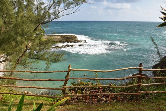Robin's Bay Photo