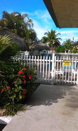 Florida City, FL: Pool Area