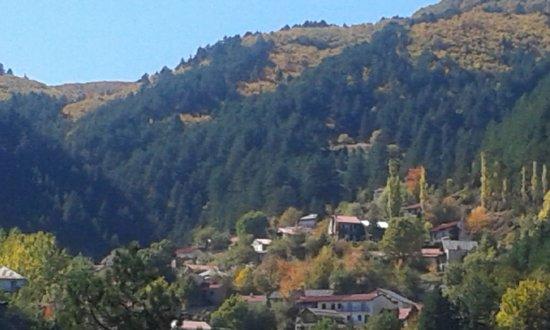 Zdjęcie Perivoli