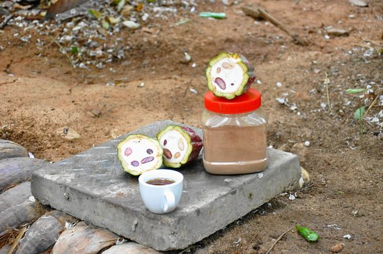 Sabaragamuwa Province, Sri Lanka: Drinking chocolate