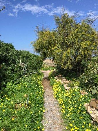 El Harhoura, Morocco: IMG-20180318-WA0022_large.jpg