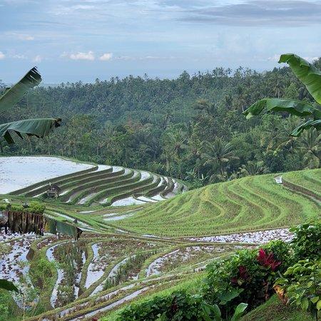 Selemadeg, Indonesia: photo1.jpg