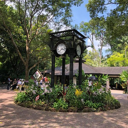 Singapore Botanic Gardens: photo1.jpg