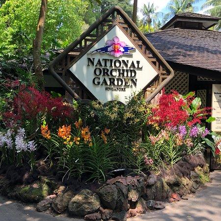 Singapore Botanic Gardens: photo2.jpg