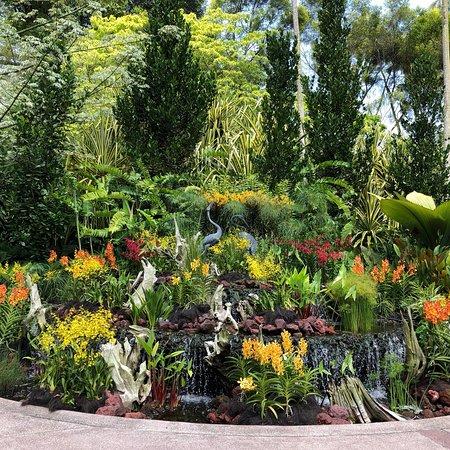 Singapore Botanic Gardens: photo3.jpg