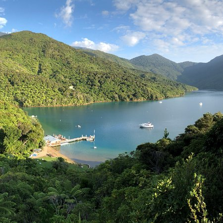 Endeavour Inlet, New Zealand: photo3.jpg