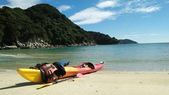 Tasman Bay Sea Kayaking Adventures: IMG-20180314-WA0051_large.jpg