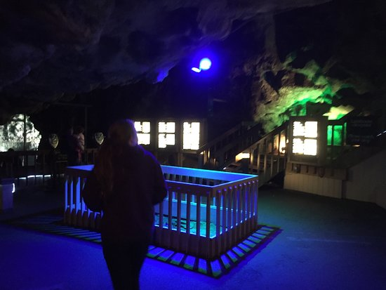 Sea Lion Caves: In the cave area