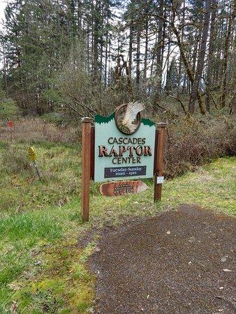 Cascades Raptor Center: IMG_20180318_132604828_HDR_large.jpg