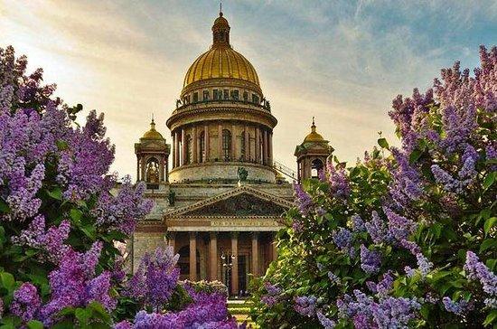 St Petersburg Visa Free Shore City