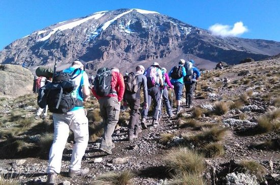 7 Day Ultimate Kilimanjaro Climbing...