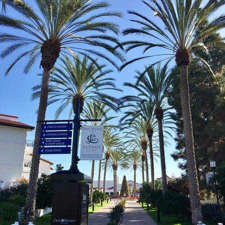 Omni La Costa Resort & Spa: photo8.jpg