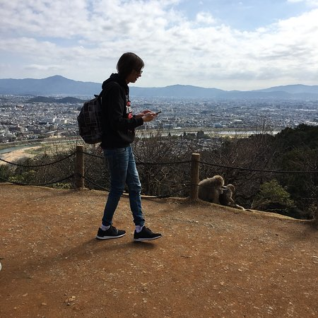 Arashiyama: photo3.jpg