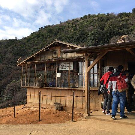 Arashiyama: photo5.jpg