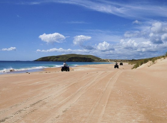 Seatoys Private Quad Bike Tours