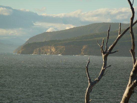 White Beach, أستراليا: Storm Bay