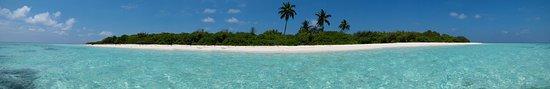 Mahibadhoo Island: IMAG0994_large.jpg