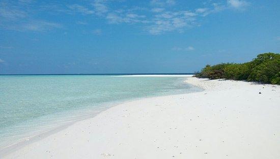 Mahibadhoo Island: IMAG0949_large.jpg