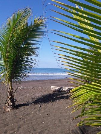 Playa Hermosa: 20180304_083710_large.jpg
