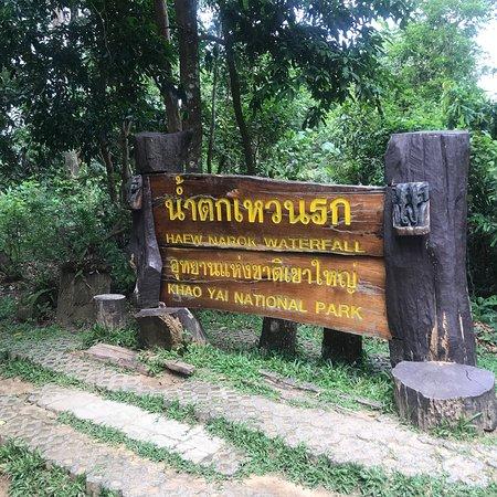 Khao Yai National Park Things To Do Tours