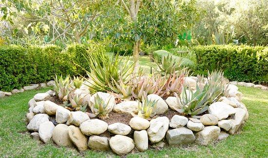McGregor, جنوب أفريقيا: Garden feature 