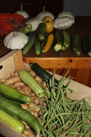 Au Coeur de Rennes: Les légumes du jardin pour la table d'hôtes