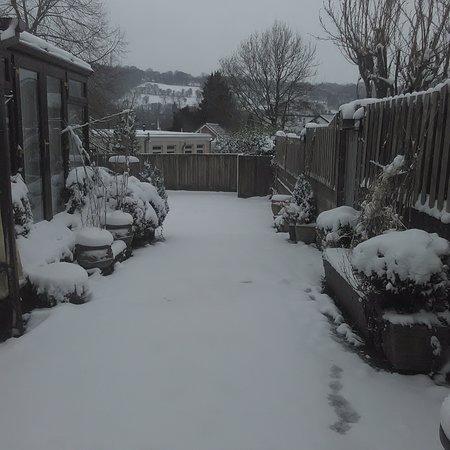 Newbridge, UK: Snowy day