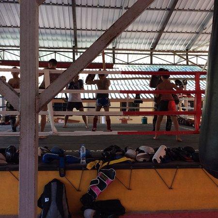 Emerald Gym Muay Thai & Fitness : photo2.jpg