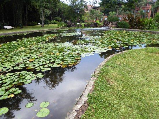 Iguazu Grand Resort, Spa & Casino: Bassin, et au fond, le départ du parcours botanique