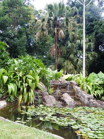 Iguazu Grand Resort, Spa & Casino: Beau bassin avec ses carpes Koi