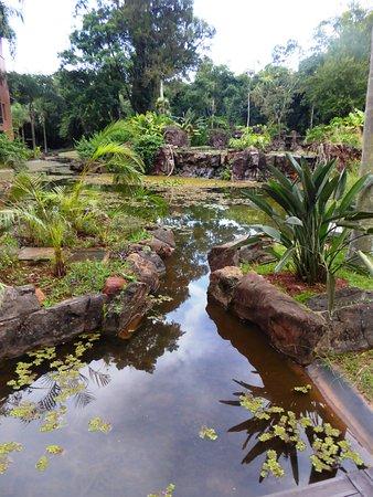 Iguazu Grand Resort, Spa & Casino: Superbes pièces d'eau, rafraîchissantes et zen