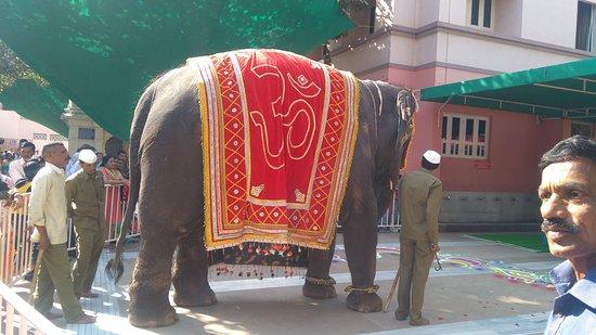 Shegaon, India: Elephant at Gajanan Maharaj Temple