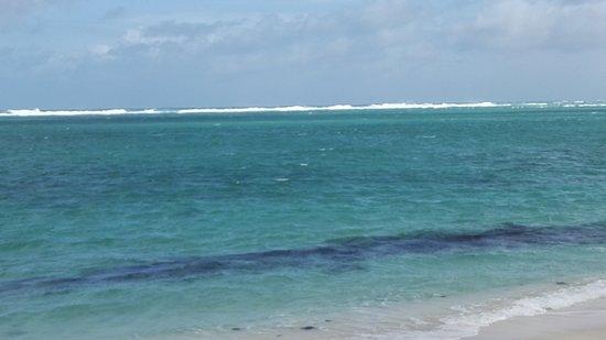 Le Morne Beach: Increible colours of the ocean