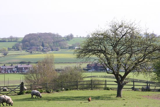 Wall Hill Farm Guest House: View from Guest House Car park