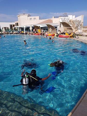 Getlstd property photo obr zek za zen reef oasis dive - Reef oasis dive club ...