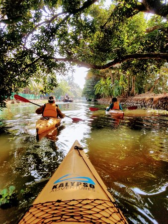 ‪‪Alappuzha District‬, الهند: Kayaking through the backwaters multi-day tour‬