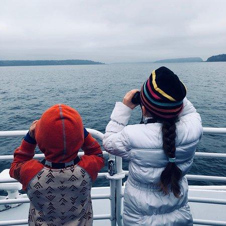 Puget Sound Express - Day Trips: photo0.jpg