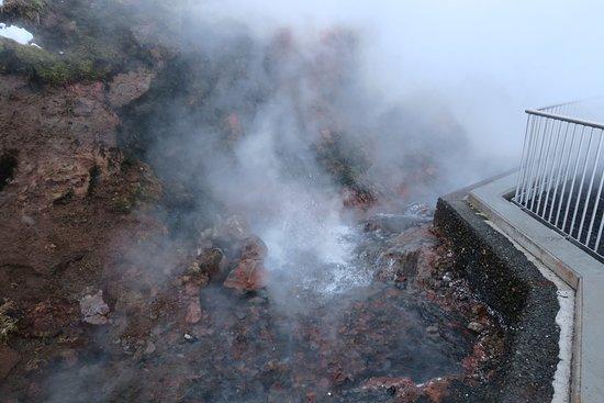 Reykholt, Iceland: Curieus hoe kokend water naar boven komt