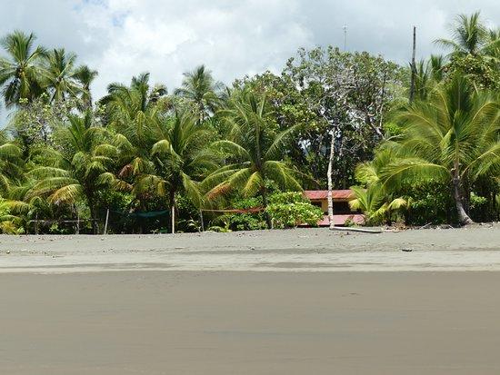 Playa Matapalo 사진