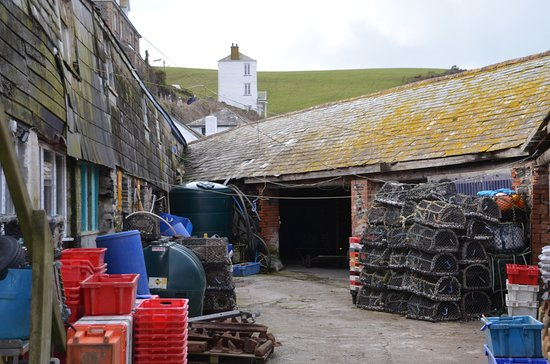 Harbour, Port Isaac, Cornwall: Lobster pots