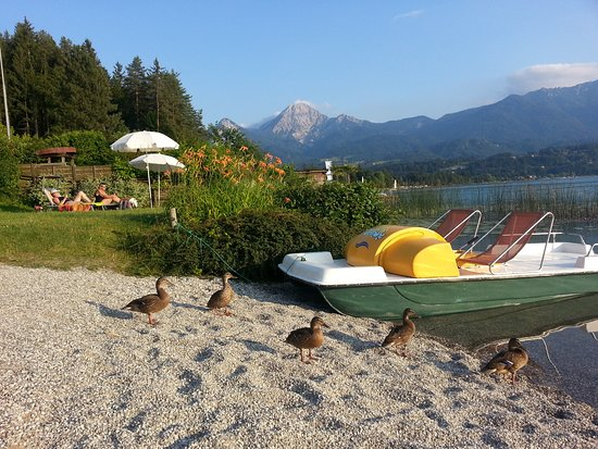 Egg am See, Austria: privater Badestrand mit Tertboot - kostenlos zu benützen