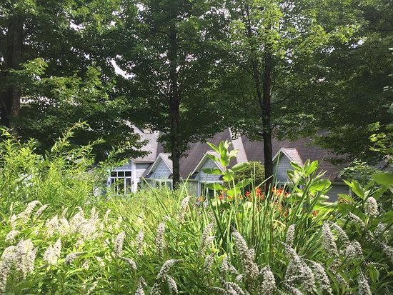 Stone Hill Inn: Our beautiful gardens an9.5 acres of woods ladened with Maple, White Pine, and Birch.