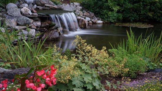 Stone Hill Inn: Elopements are our specialty; our backyard garden waterfall is a favorite location.