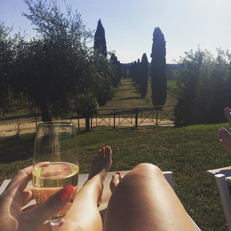 Salvadonica - Borgo Agrituristico del Chianti: Lounging by the pool looking into the vineyards